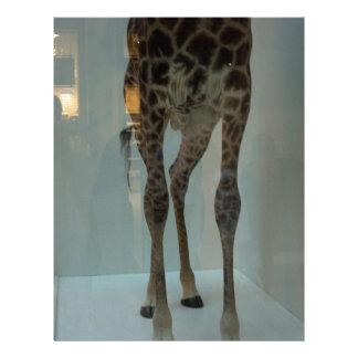 ¿Las piernas de la jirafa la parte de leones … Membrete Personalizado