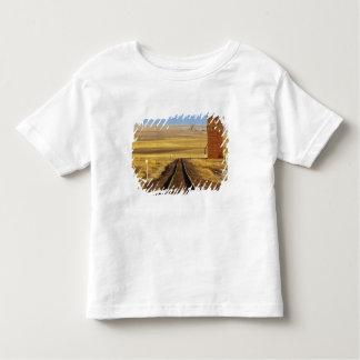 Las pistas de ferrocarril llevan al granero viejo camisas