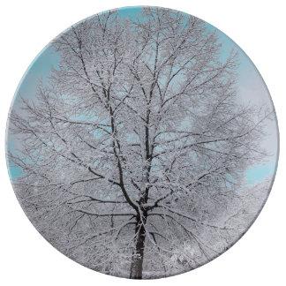 Las placas de la porcelana del roble del invierno platos de cerámica