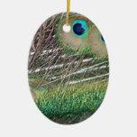 Las plumas del pavo real se cierran encima de dise ornamentos de navidad