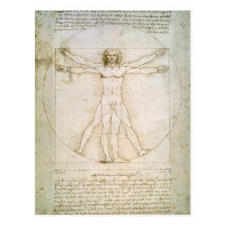Las proporciones de la figura humana tarjetas postales