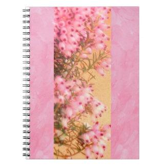 Las puntillas del brezo refrescan el cuaderno rosa