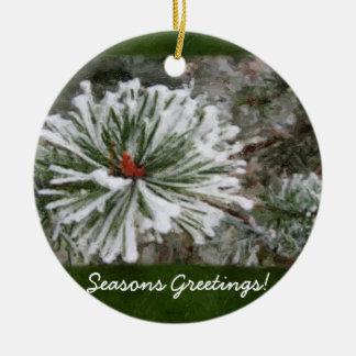 Las ramas imperecederas Nevado cierran el ornament Ornato