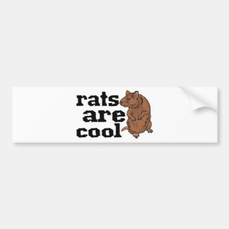 Las ratas son frescas pegatina de parachoque