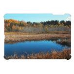 Las regiones pantanosas acumulan y caso del iPad d iPad Mini Carcasas