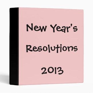"""Las resoluciones del Año Nuevo, 2013 Carpeta 1"""""""