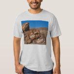 Las rocas de los pescados camisas