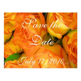 Las rosas bicolores amarillas ahorran el tarjetas postales