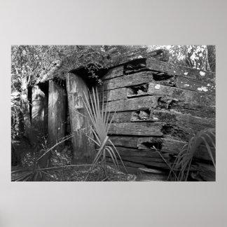 Las ruinas 2 de Flagler Impresiones