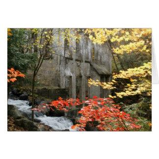 Las ruinas de Willson, Quebec Felicitaciones