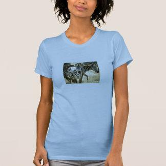 Las señoras de la cebra cupieron la camiseta de