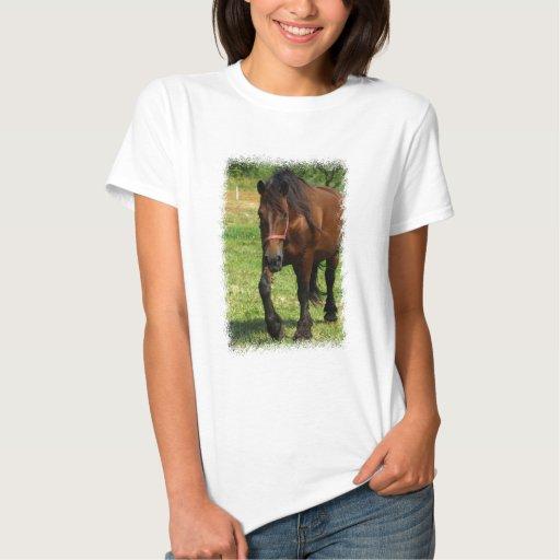 Las señoras del caballo de proyecto cupieron la t-shirts