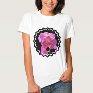 Las señoras rosadas florecientes de las orquídeas playeras