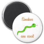 Las serpientes son frescas iman de nevera