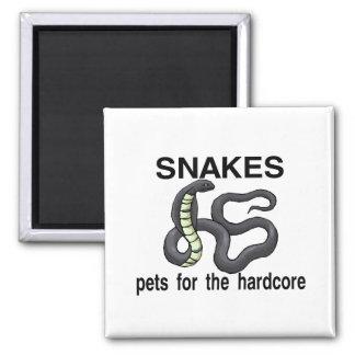 Las serpientes son mascotas para el incondicional iman de frigorífico
