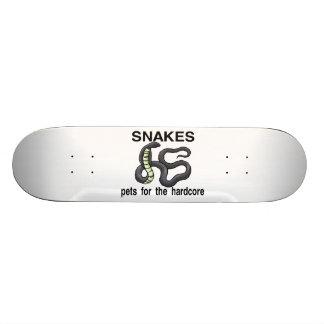 Las serpientes son mascotas para el incondicional patin