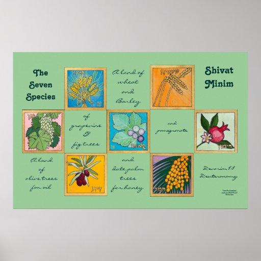 Las siete especies o Shivat Minim Poster