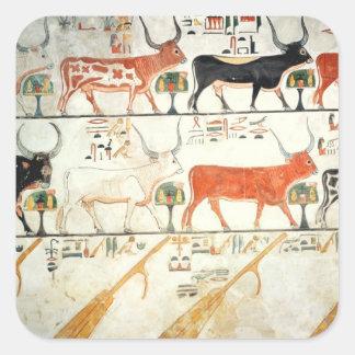 Las siete vacas celestiales y el toro sagrado pegatina cuadrada