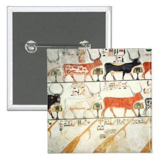 Las siete vacas celestiales y el toro sagrado pins