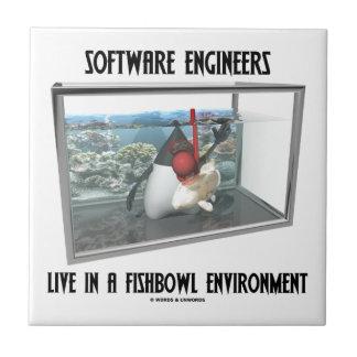 Las Software Engineers viven en un ambiente de Fis Tejas Ceramicas