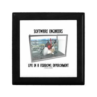 Las Software Engineers viven en un ambiente de Fis Caja De Regalo