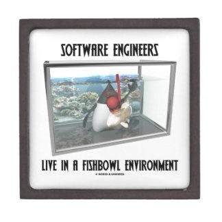 Las Software Engineers viven en un ambiente de Fis Caja De Recuerdo De Calidad