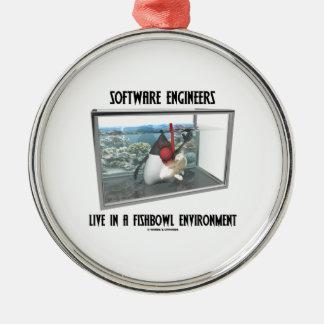 Las Software Engineers viven en un ambiente de Fis Ornato