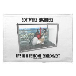 Las Software Engineers viven en un ambiente de Fis Mantel
