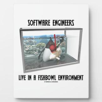 Las Software Engineers viven en un ambiente de Fis Placas Para Mostrar