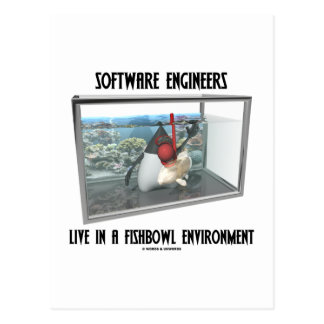 Las Software Engineers viven en un ambiente de Fis Postal