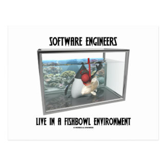 Las Software Engineers viven en un ambiente de Fis Tarjetas Postales