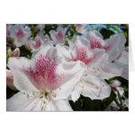 Las tarjetas de felicitación del jardín de flores