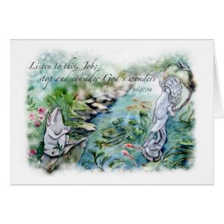 Las tarjetas de las maravillas