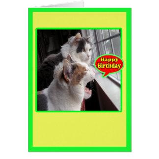 Las tarjetas del gato, feliz cumpleaños divertido