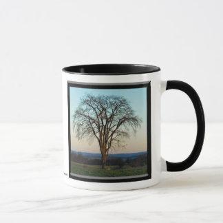 Las tazas del árbol