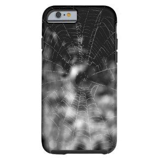 Las telas de araña hacen formas que obligan