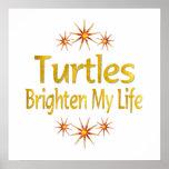 Las tortugas aclaran mi vida impresiones