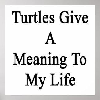 Las tortugas dan un significado a mi vida poster