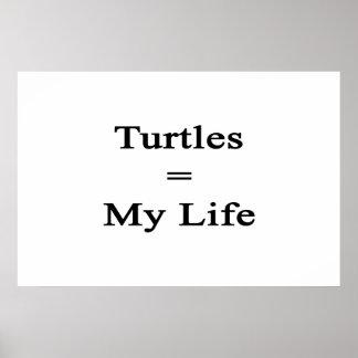 Las tortugas igualan mi vida poster