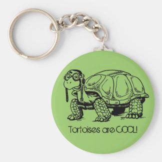 ¡Las tortugas son FRESCAS! Llavero