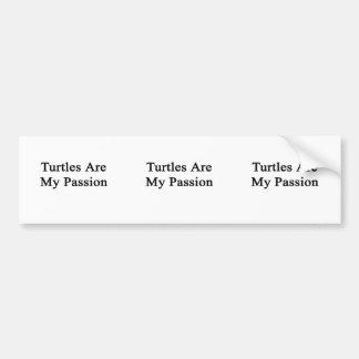 Las tortugas son mi pasión pegatina de parachoque