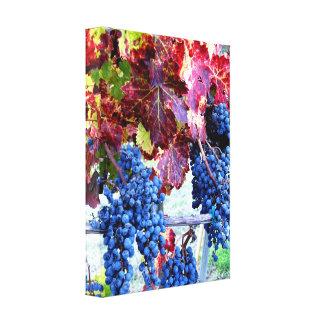 Las uvas y las vides envolvieron la lona impresión en lienzo estirada