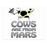 las vacas de estropean postales