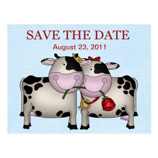 Las vacas del boda ahorran la postal de la fecha