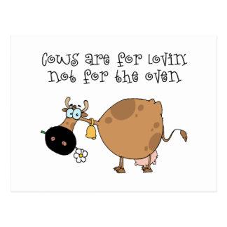 Las vacas están para Lovin Postal