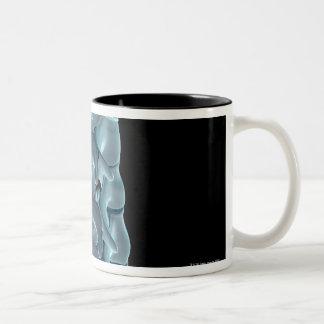 Las vértebras cervicales 5 tazas de café