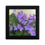 Las violetas azules más azules cajas de joyas