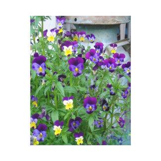 Las violetas de LeAnn Impresión De Lienzo