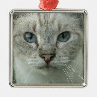 Last Hopes Blue Eyes Metal Ornament