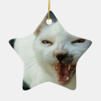 Last Hopes Chatty Catty Ceramic Ornament